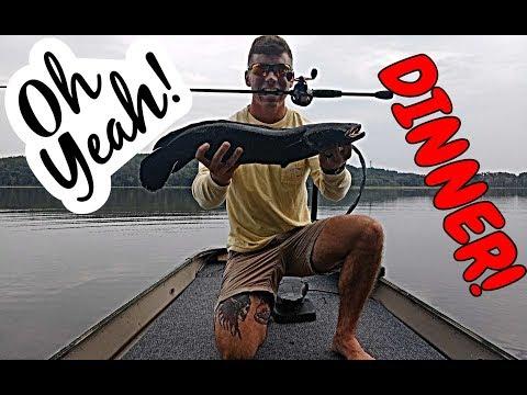Fishing For Snakehead In the Chopawamsic Creek ✔