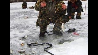 смотреть бесплатно видео зимняя рыбалка