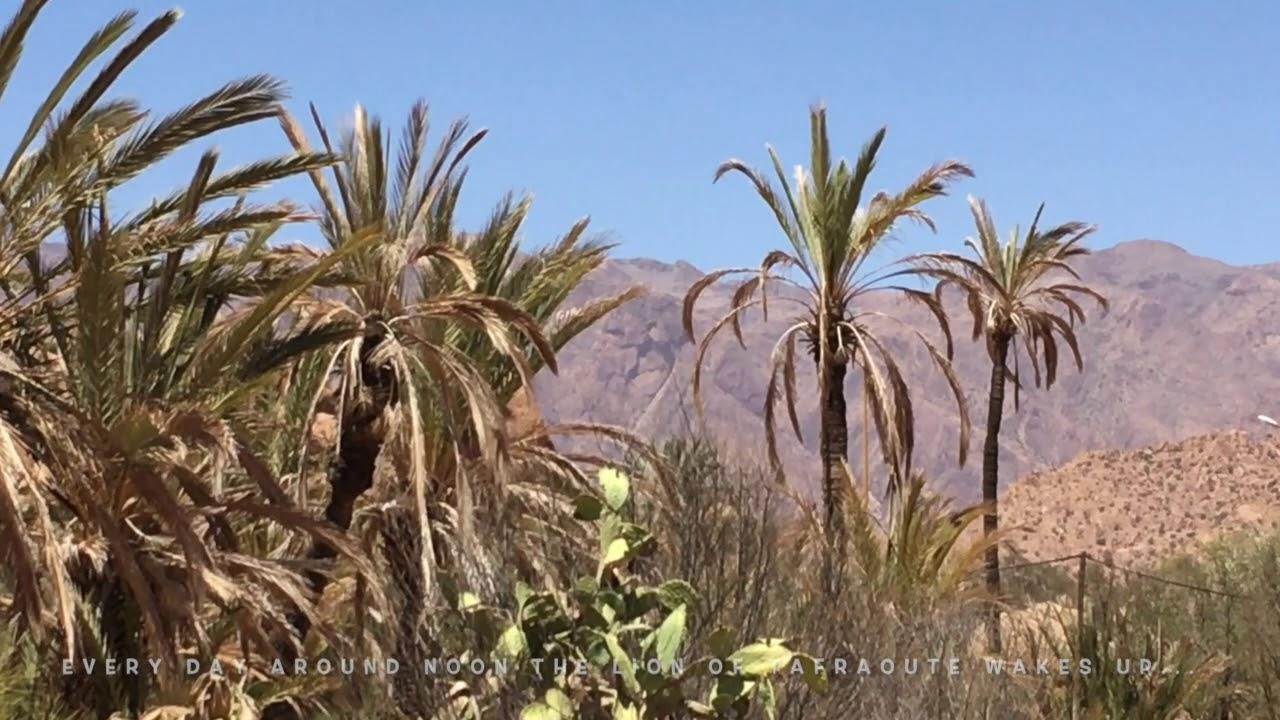 The lions head of Van Valley, Tafraoute, Morocco, Maroc