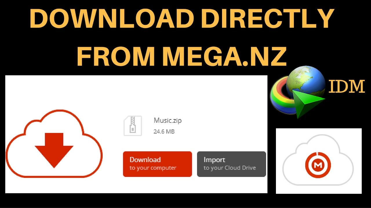 How To Download Files Directly From MEGA NZ