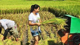 航拍美景记录乡村风貌!秋子带你看广西乡村,一片片的稻田太美了 thumbnail