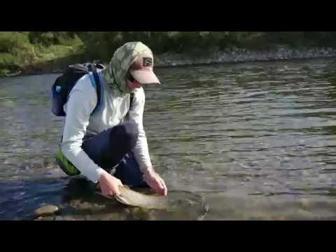 """Fly Fishing New Zealand   """"Home waters"""""""