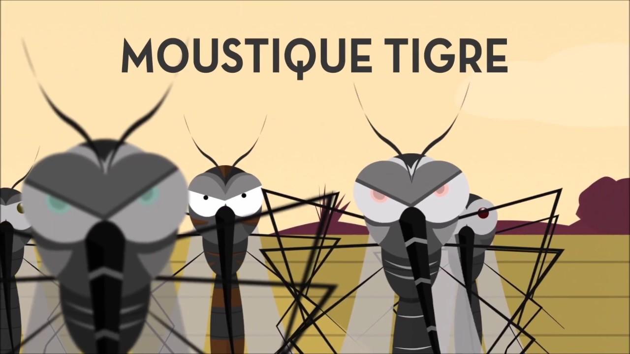 comment viter d 39 tre piqu par les moustiques youtube. Black Bedroom Furniture Sets. Home Design Ideas
