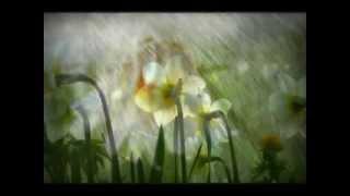 Chove en Santiago - Lorca - Luar Na Lubre