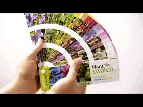 Plantswatch by color and hardiness zone