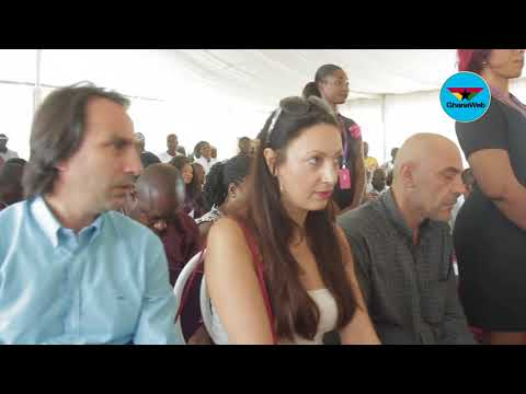 Grant us 'Special Economic Zone' status to boost business - Appolonia City CEO appeals
