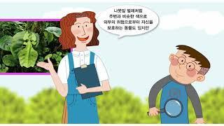 초 미술3 2단원 도입애니메이션