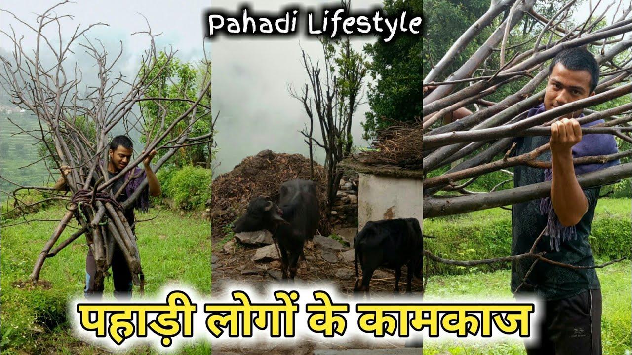पहाड़ी लोगों के कामकाज || उत्तराखंडी जीवन || पहाड़ी दिनचर्या || Pahadi Lifestyle Vlog By Ashutosh Negi