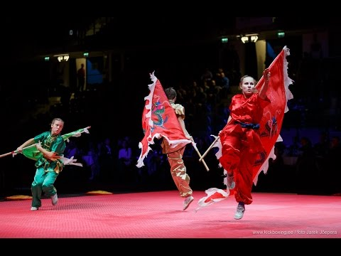 Martial Arts Games Gala in Tallinn 13 February 2016  4K Ultra HD