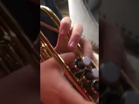 Trumpet With Trombone Mouthpiece? Tribune with Trumpet?