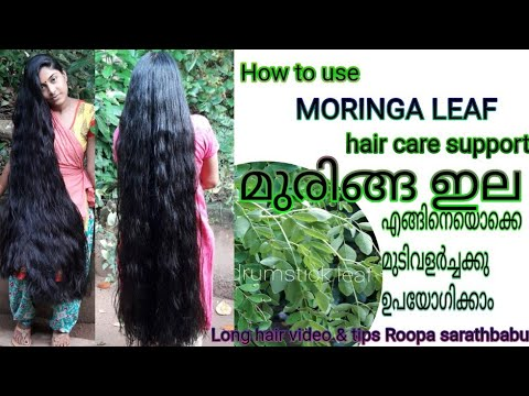 How to use MURINGA leaf for  hair care.... മുരിങ്ങ ഇല എങ്ങിനെ മുടിവളർച്ചക്കു ഉപയോഗിക്കാം..