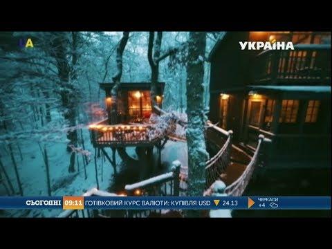 Українці зводять будинки на деревах