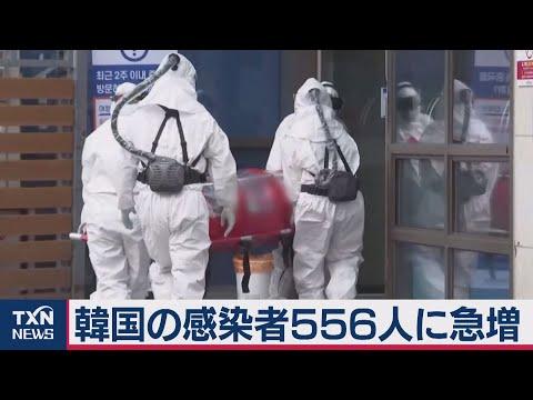 2020/02/23 韓国の感染者556人に急増 前日比123人増
