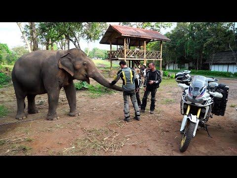 Motorcycle World Tour,