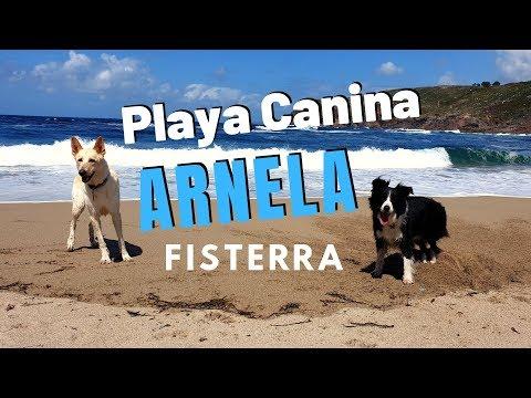 PLAYA CANINA ARNELA EN FISTERRA GALICIA 2019