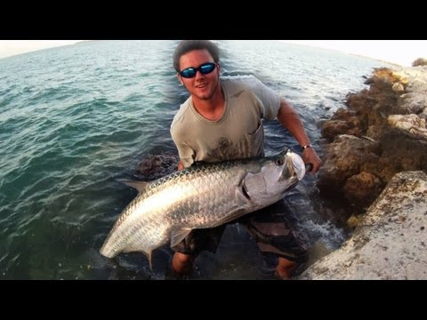 Bridge Tarpon Fishing In The Keys!