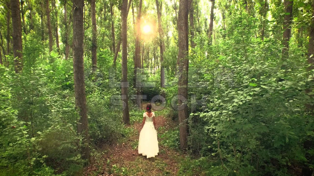 Beautiful Princess Bride Walking Through Forest Path Aerial Fly Trees Drone Shot Sunset