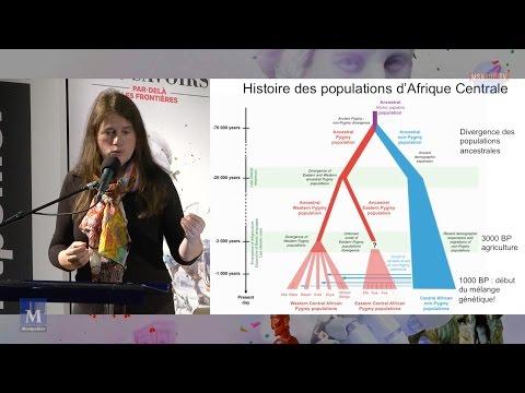 Évolution et diversité génétique de notre espèce : rôle de l'interaction entre culture et génétique
