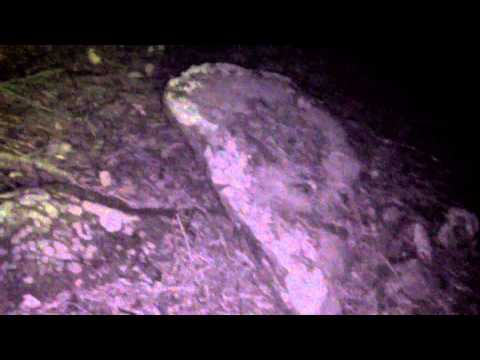 Paranormal Investigation: Brook Forest Inn - Evergreen, CO (Anonymous)