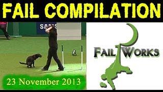 Fail Compilation November 23 | by FailWorks | Подборка Неудач