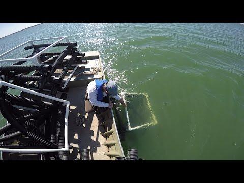 Installing Fish Habitat Cubes in Kansas