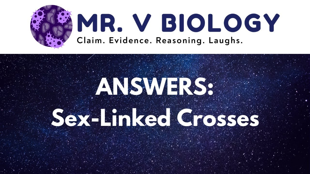 Answers SexLinked Crosses YouTube – Genetics X Linked Genes Worksheet