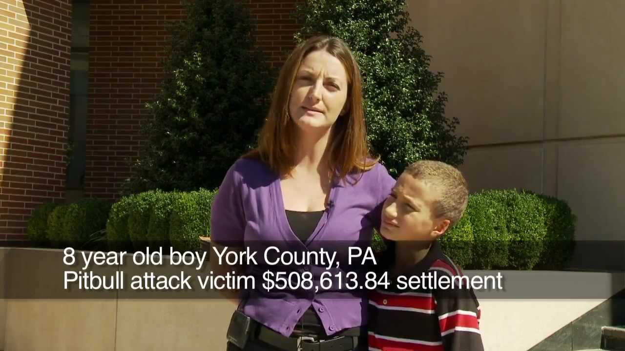 Dog Bite Injury Attorney & Dog Attack Lawyer in Reading, PA