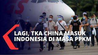 Lagi, Puluhan TKA asal China Masuk ke Indonesia Saat PPKM