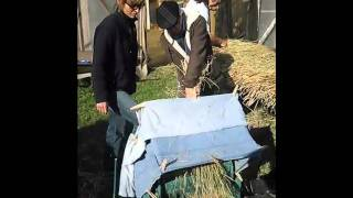Threshing Rice at South River Farm