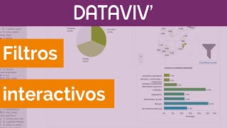 Análisis estadístico: Informe interactivo y dinámico con filtros