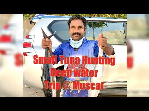 Offshore Deep Sea Lure Fishing Trip @ Muscat, Oman Fishing