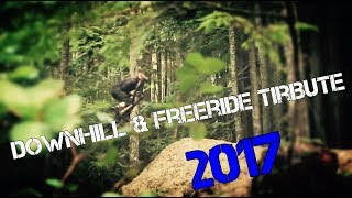 Downhill and Freeride Tribute 2017 Vol.1 [The MT2B]
