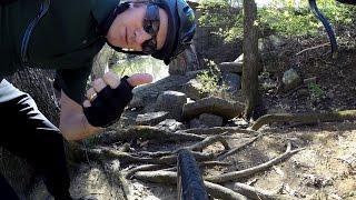 BikeBlogger.com Website Shameless Plug! Cycling Commute BikeBlogger