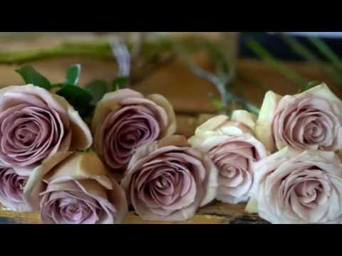 Stone House Creative - Winnipeg Wedding Florist Brand Video