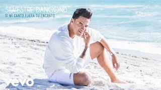 Silvestre Dangond - Si Mi Canto Fuera Tu Encanto (Audio)