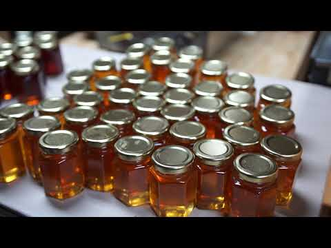 Made in Virginia - Episode #7 - Gunter Honey & Sweet Virginia - Honey and Honey Bees