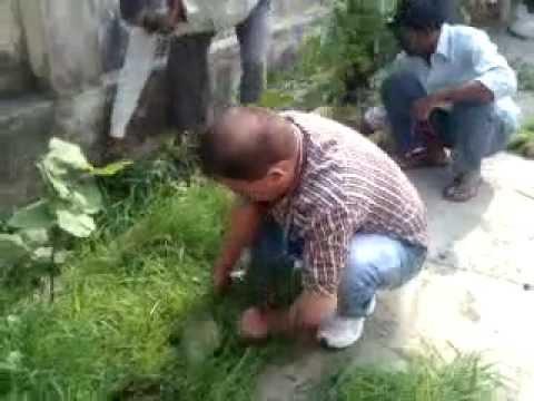 Bsnl karmi majhola exchange moradabad, swachh bharat abhiyan me samil hote huye