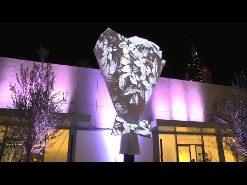 Festival of Lights Dubai - City of Lyon
