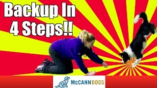 Teach Your Dog How To Walk Backwards And Even Up A Wall!