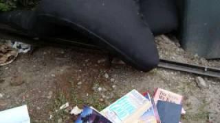 funny gothic folk music - Bye-bye, Butterflies