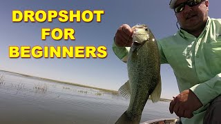 Dropshot For Beginners | Bass Fishing