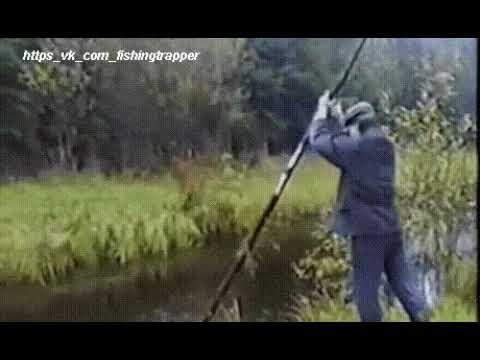 популярная охота на канале охота и рыбалка