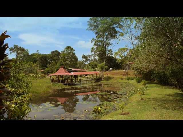 El Zota Biological Field Station Costa Rica