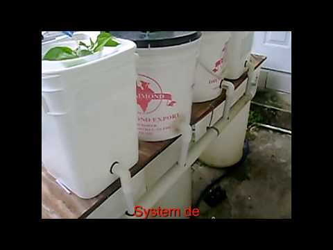Copy of Green Hands Hobbyist Organic  Home Gardening Hydroponics Project Test System 1 27 9 2017 2