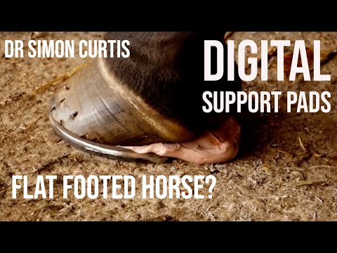 Treating A Horse With Low Heels - Using Digital Support Pads & Synthetic Frog