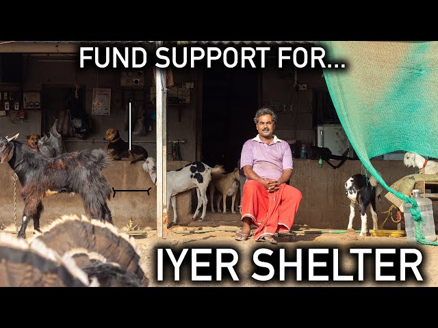 Fund Support For - Iyer Shelter