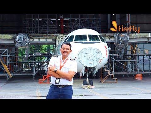 Firefly Engineer's Life