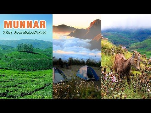 Munnar, The Enchantress | Winter Destination
