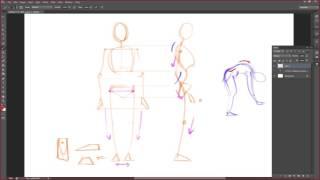 Упражнение на построение анатомия человека