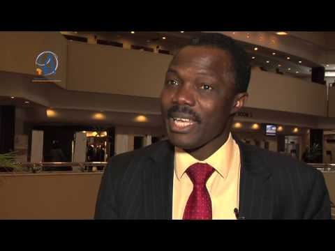 AEC 2014 - Interview with Ayodele Odusola, UNDP Regional Bureau for Africa